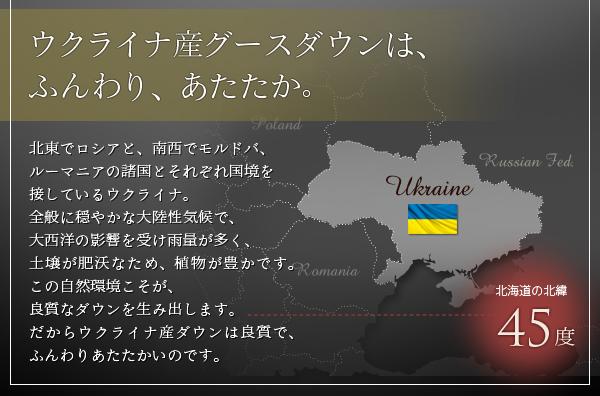 ウクライナ産グースダウンは、ふんわり、あたたか。
