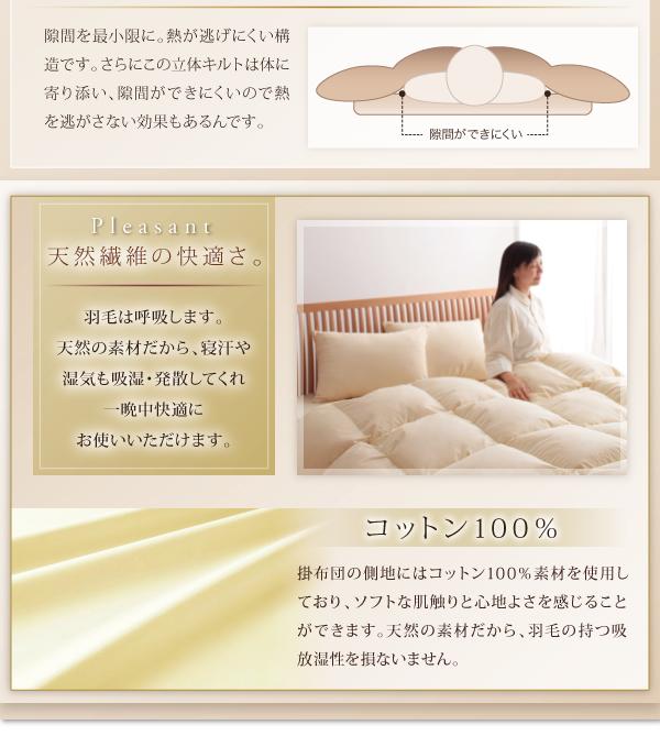 天然繊維コットン100%