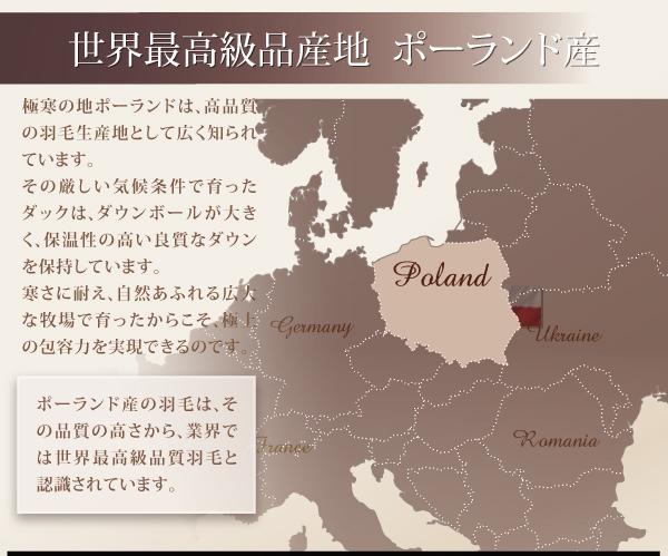 世界最高級品ポーランド産