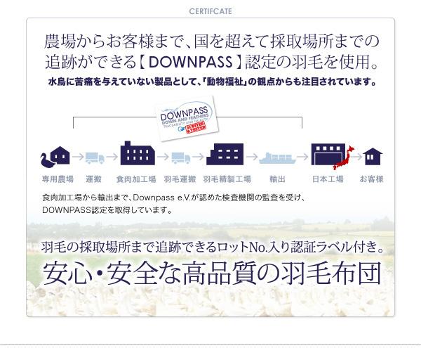 DOWNPASS認証