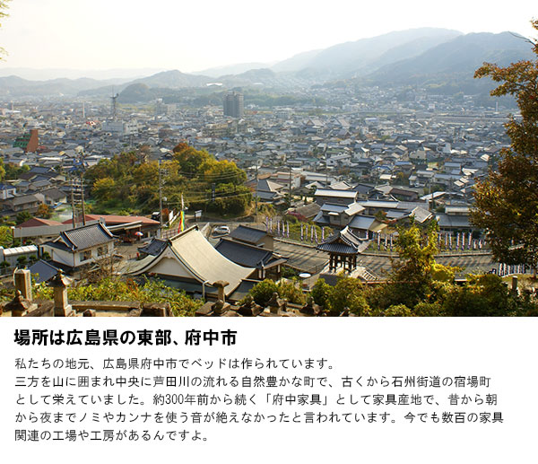 場所は広島県の東部、府中市