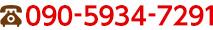 090-5934-7291