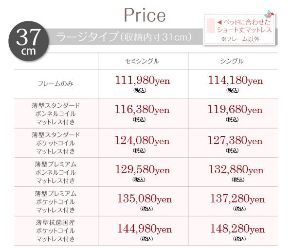ラージタイプ価格