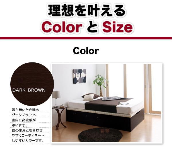 カラー:ダークブラウン