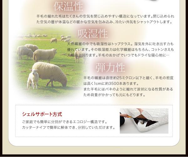 ヴィンテージ風 収納付きベッド【IDORDA】イドルダ
