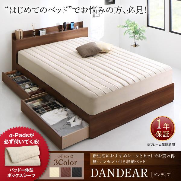 収納付きベッド【DANDEAR】ダンディア